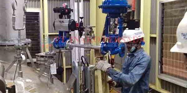 workmanship service valve by specialist employee Inako Persada